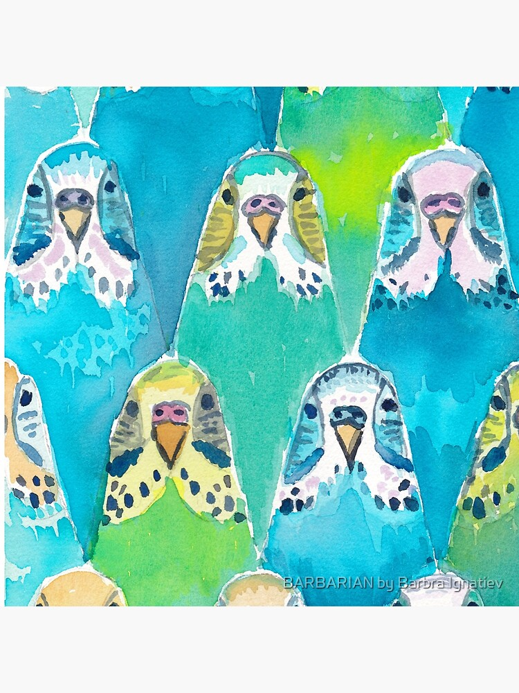Watercolour Budgies by Barbarian