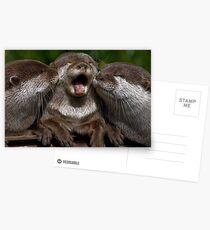 Awww... Get off! Postcards
