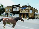 Its A One Horse Town! by NatureGreeting Cards ©ccwri