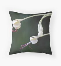 Harlequin - Clerodendrum indicum Throw Pillow