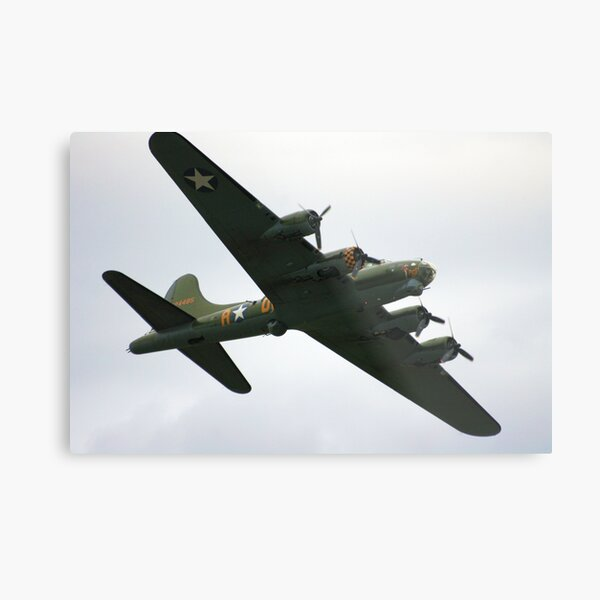 Sally B Flies Again! Metal Print