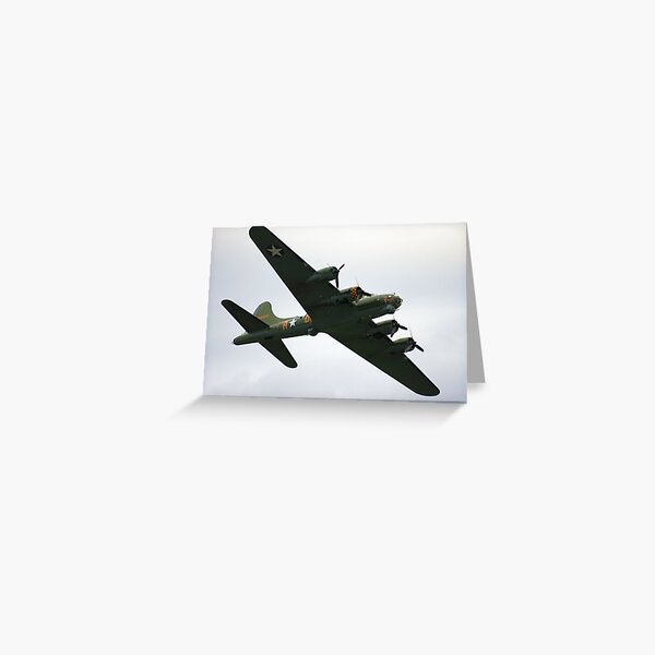 Sally B Flies Again! Greeting Card