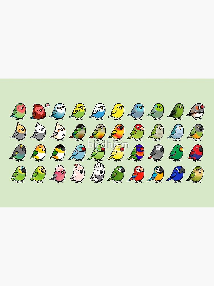 Everybirdy  by birdhism