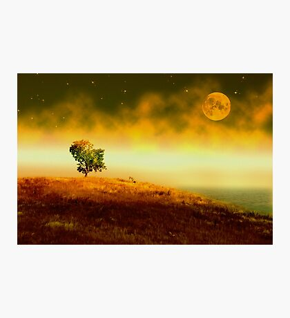 In the Stillness of Night Photographic Print