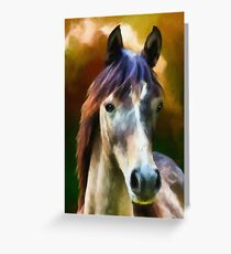 Horse greeting cards redbubble horse greeting card m4hsunfo