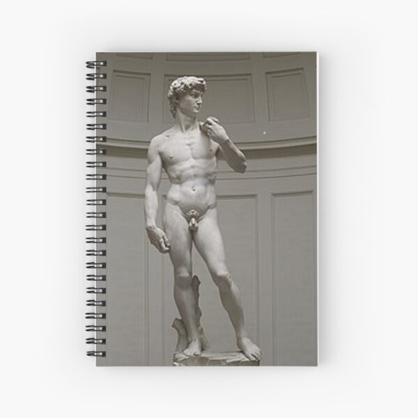 David by Michelangelo #David #Michelangelo #DavidbyMichelangelo #masterpiece Renaissance sculpture Spiral Notebook