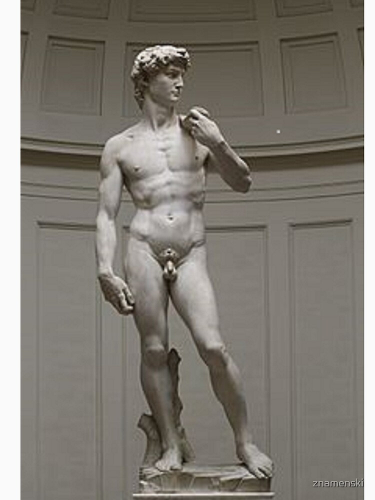 David by Michelangelo #David #Michelangelo #DavidbyMichelangelo #masterpiece Renaissance sculpture by znamenski