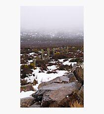 Snow on the lake 2 Photographic Print
