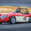 1955 Austin Healey 100M by Willie Jackson