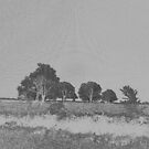 Black, White and Grey Countryside By KABFA Miss K L Slomczynski by KABFA