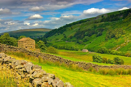 In The Dales by Trevor Kersley