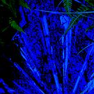 Abstract Blue Plant by schiabor