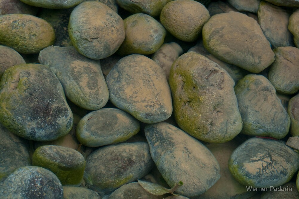 Pebbles in a Pond by Werner Padarin