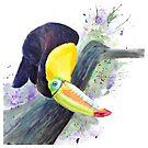 « Toucan coloré » par cindybarillet