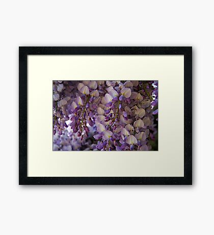 Purple Heaven Framed Print