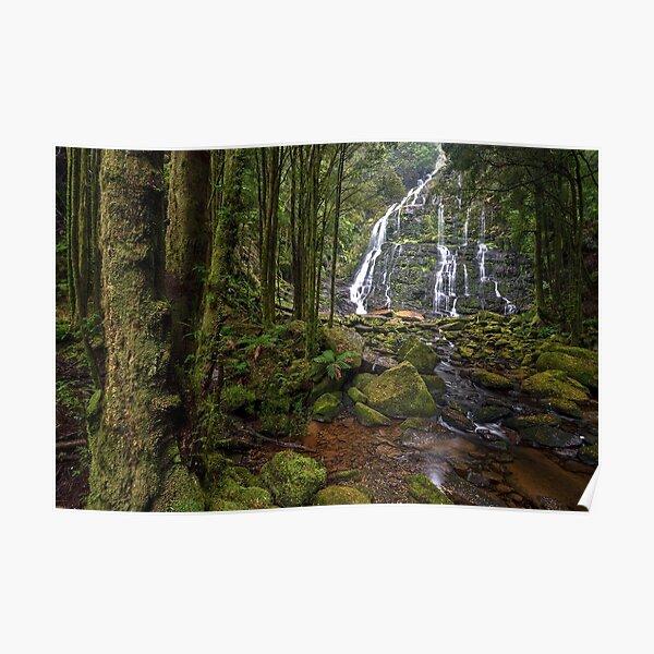 Tasmanian Wilderness Poster