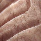 transparent silky skin by yvesrossetti