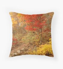 Colors Of Autumn, Shenandoah Throw Pillow