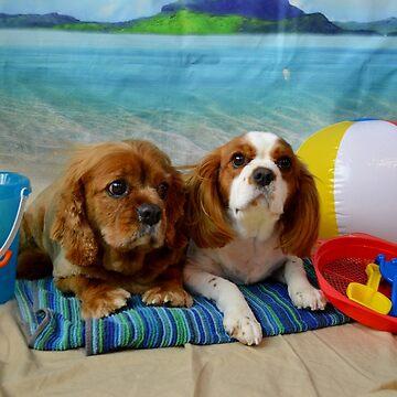 Zak & Kacey Beach Time by twinkletoes21