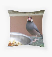 bird eating Throw Pillow