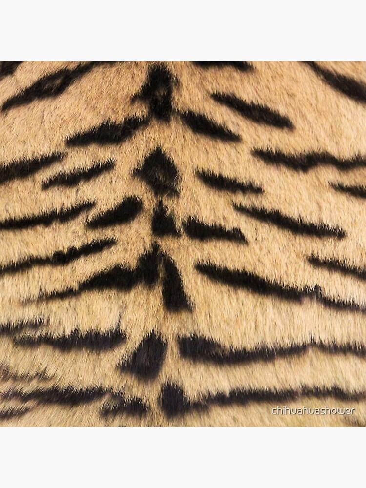 Tiger print by chihuahuashower