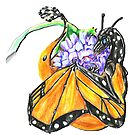 Monarch Butterfly Dragon by Muninn