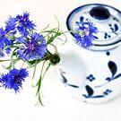Blue Cornflower Display  by Kasia-D