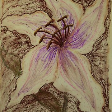 Stargazer Lily in Pastel by DlmtleArt