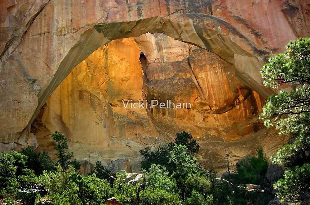 La Ventana Natural Arch by Vicki Pelham