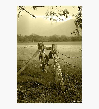 Forgotten Fields Photographic Print
