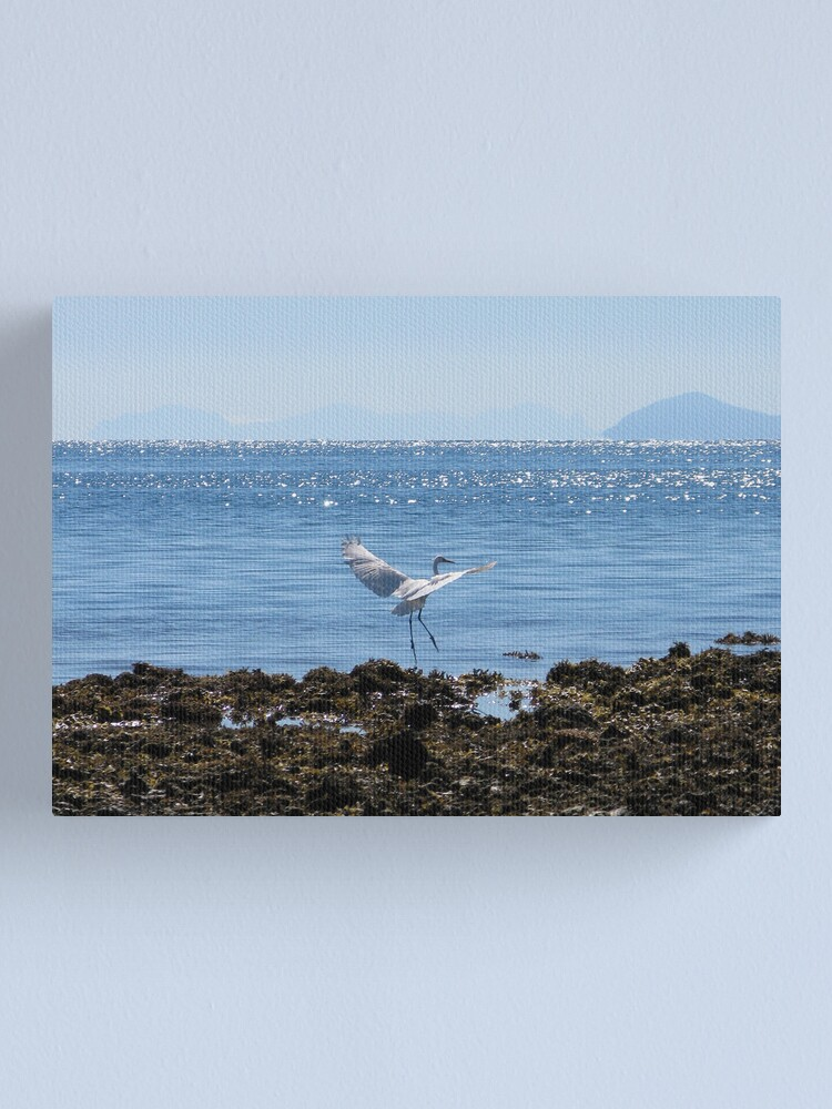 Alternate view of White Lady Canvas Print