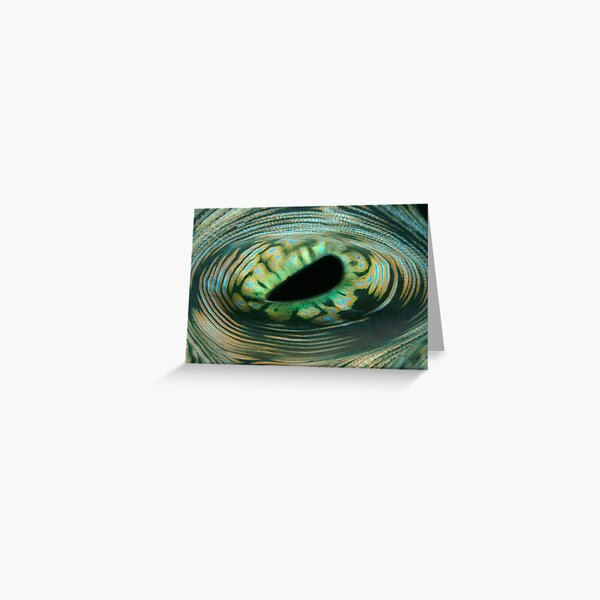 The Eye of the Reef Greeting Card