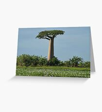 Lone Monarch Towering High Above its Court Greeting Card