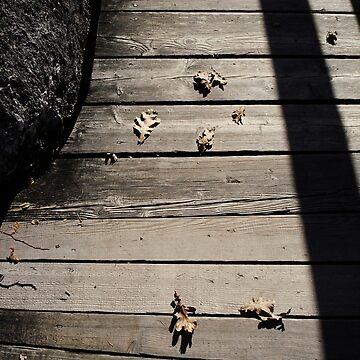 Pensive Autumn by MenegaSabidussi