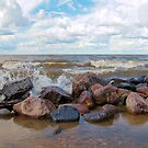 from the rocks point of view by Cheryl Dunning