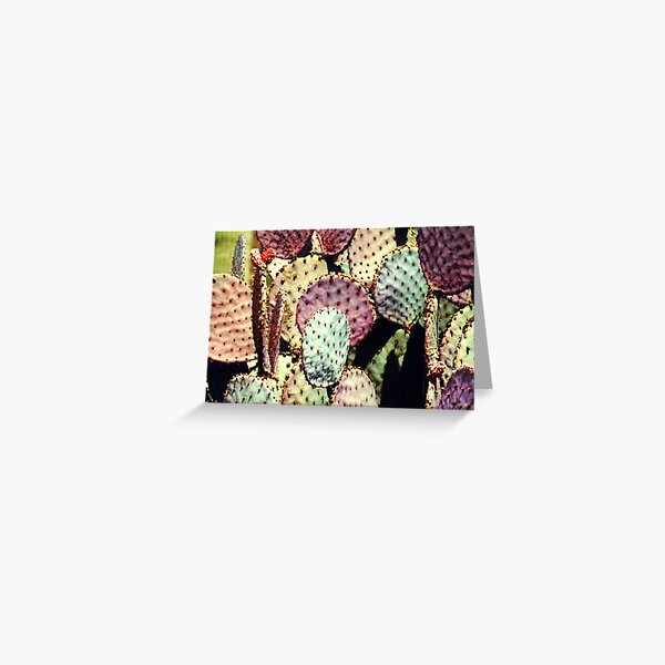 colourful prickly rackets Greeting Card