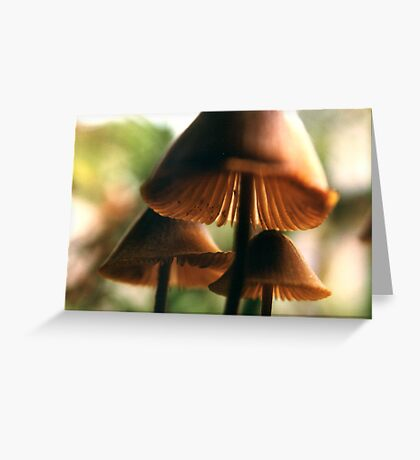 look under my hat Greeting Card