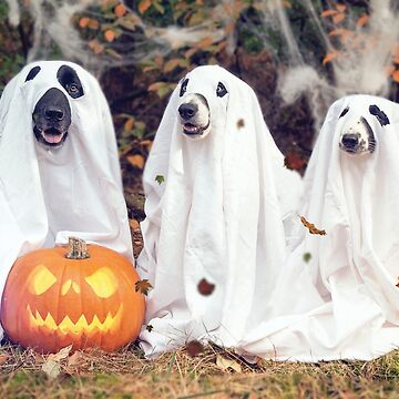 Halloween Hounds by DesignsAndStuff