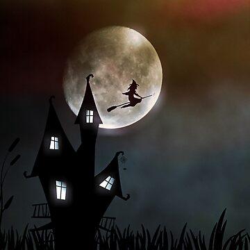 Flying Witch by DesignsAndStuff
