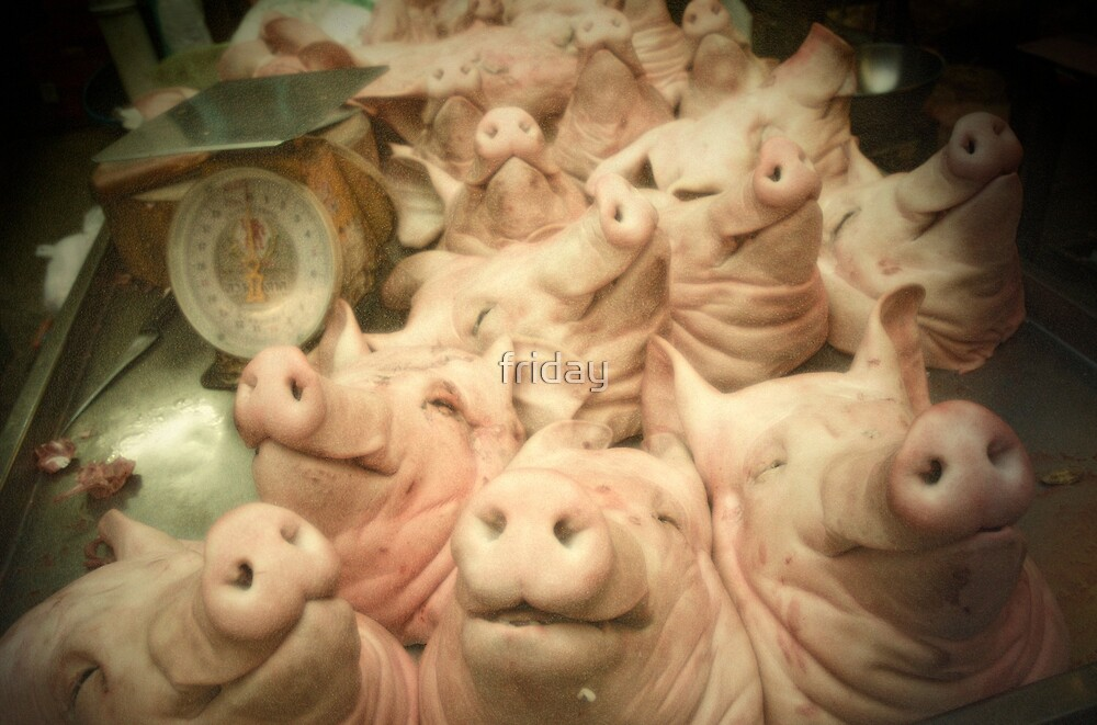 sleeping pigs heads by friday