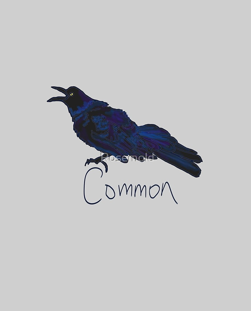 Grackle by Rosemold