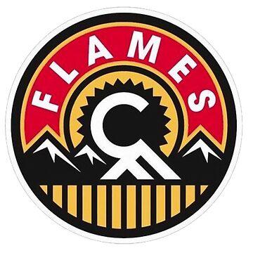 Calgary Flames T Shirt by tersisadi