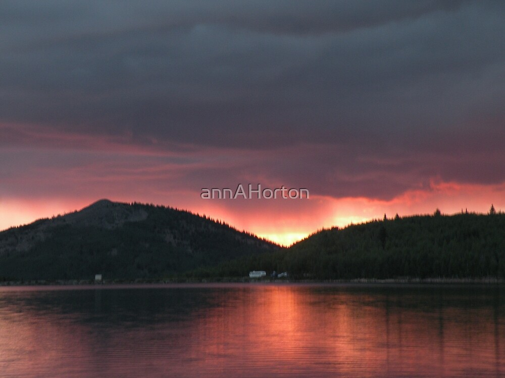 Bison sunset by annAHorton