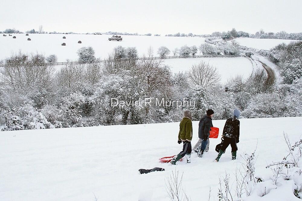 'off sledging' by David R Murphy