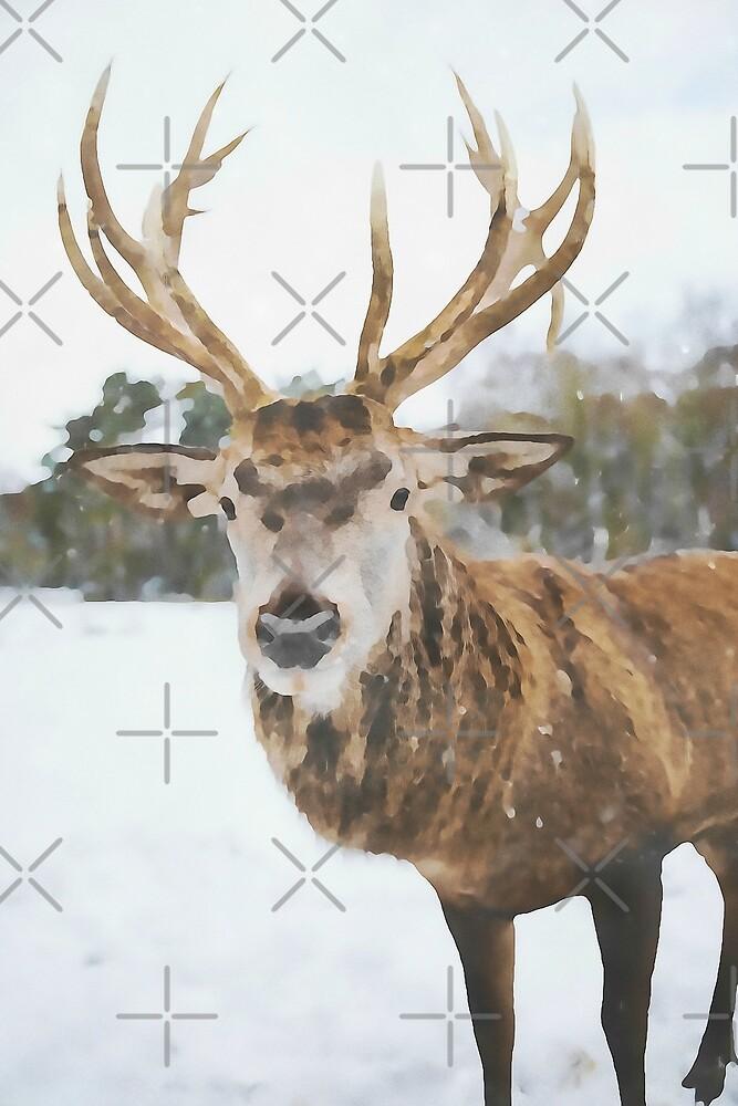 Moose in Winter Snow by Not That Fine Art NTFA