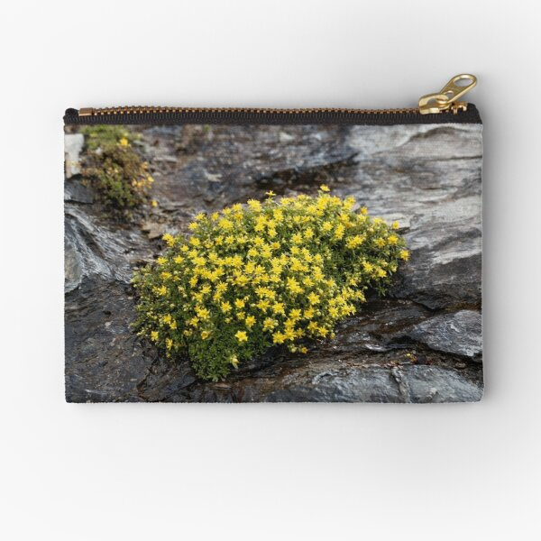 Flowers of musky saxifrage (Saxifraga moschata) Zipper Pouch