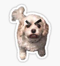 Pegatina Perro enojado