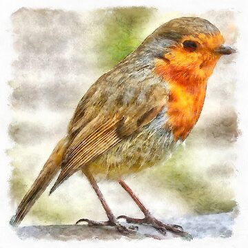 Christmas Robin Winter Watercolor by taiche