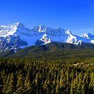 THE ROCKY MOUNTAINS by Sean Jansen