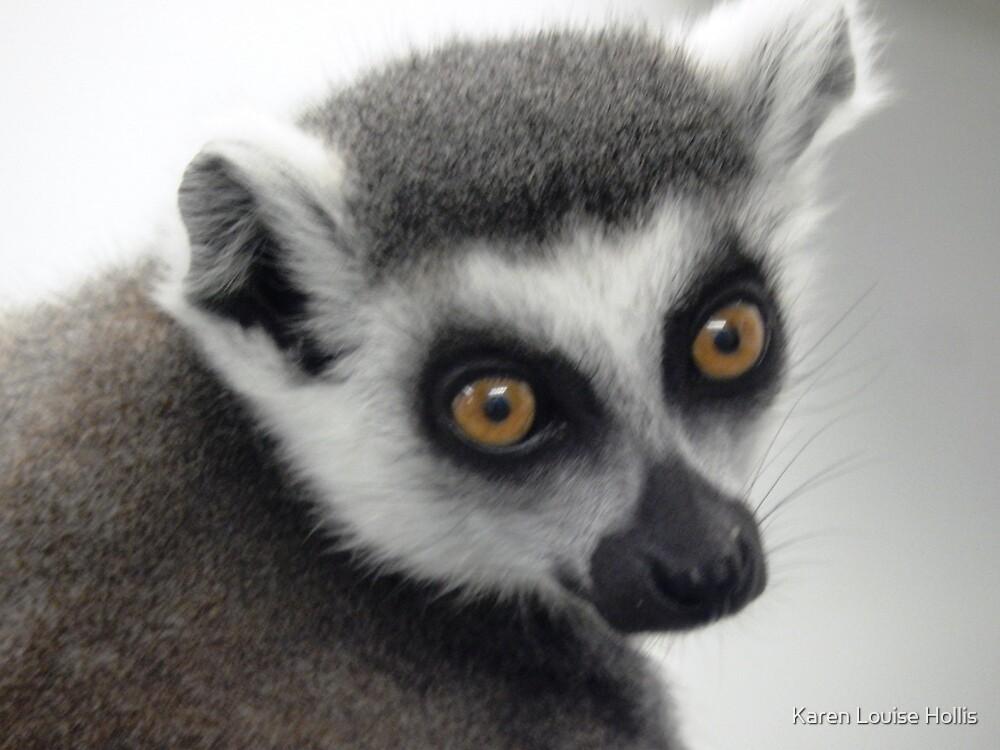 Lemur! Eh? What? by Karen Louise Hollis